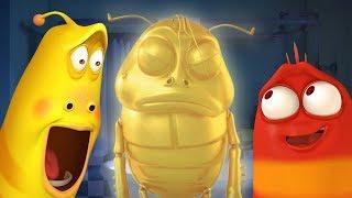 Larva - Kupel