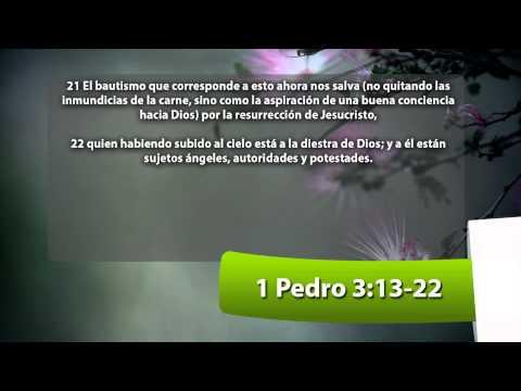Vida en Él, Miércoles 23 de Octubre 2013, Pastor Roberto Pérez