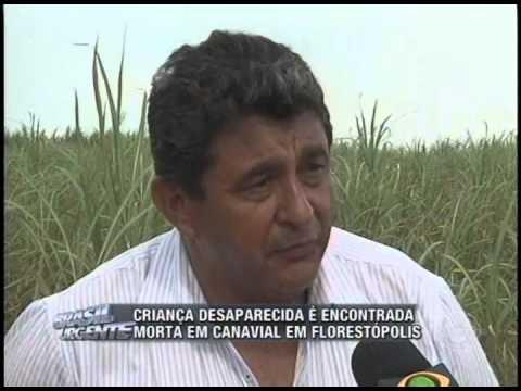 Criança desaparecida é encontrada morta em canavial em Florestópolis (20/01)