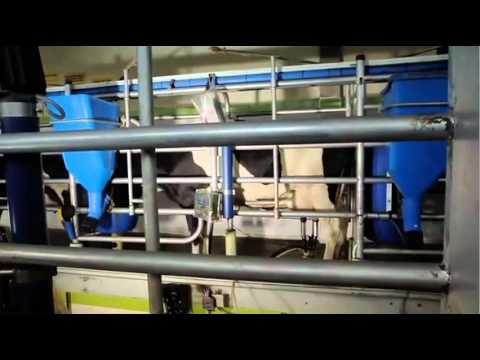 SOLLA Vídeo Institucional 2012