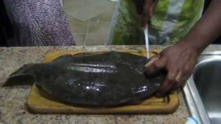 How To Fillet / Clean A Flounder / Fluke Fish