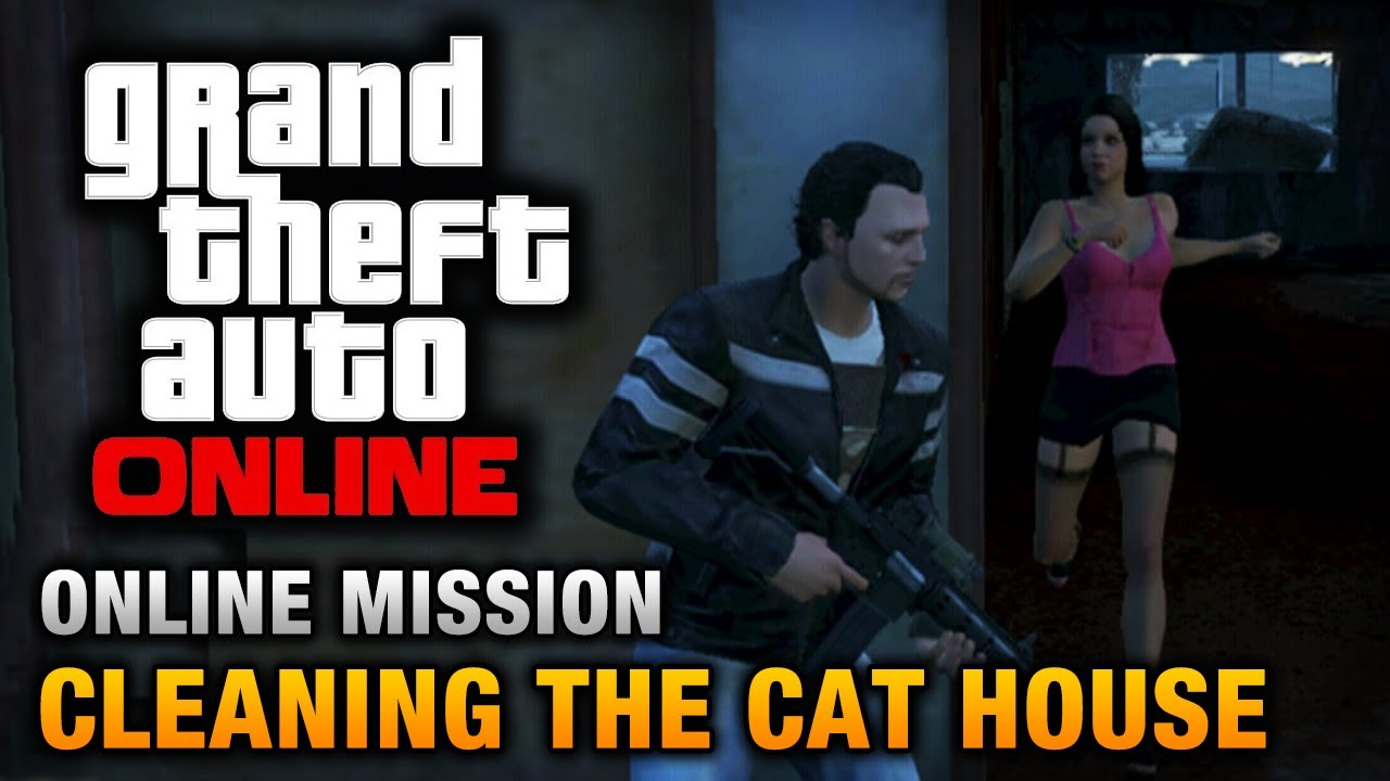 Gta Online Cleaning The Cat House