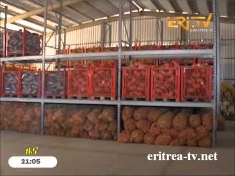 Eritrean Products of Massawa Plastic Factory on the verge of market debut