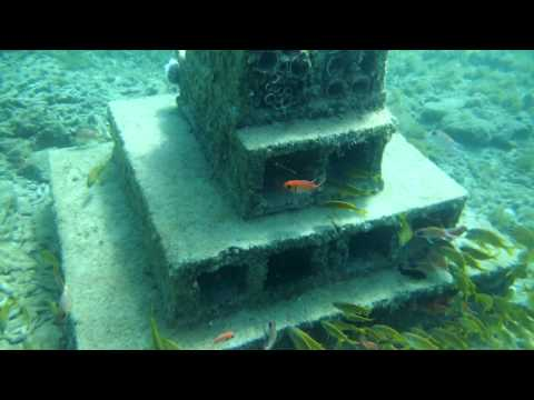 Dive Grenada Artificial Reef and Marine Conservation in Grenada