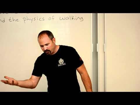 Physics of Walking