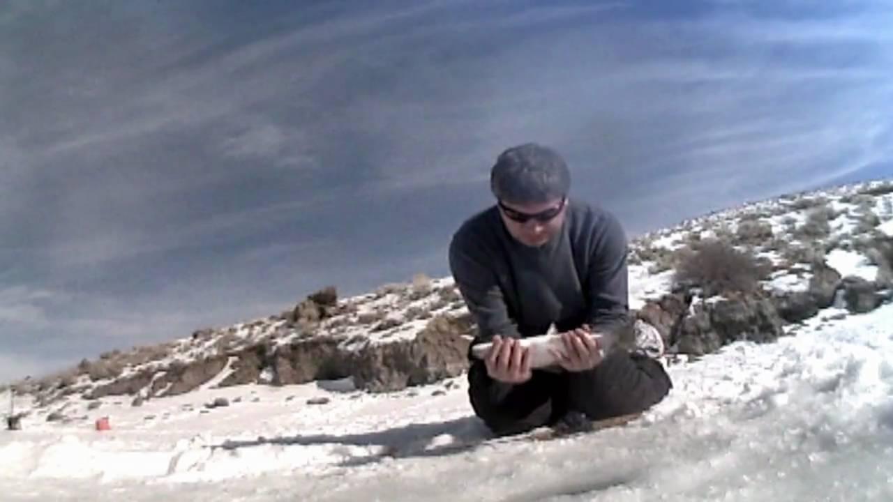 Panguitch lake ice fishing youtube for Panguitch lake fishing report