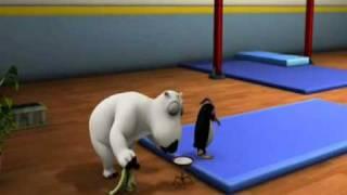 Medveď Bernard - Gymnastika