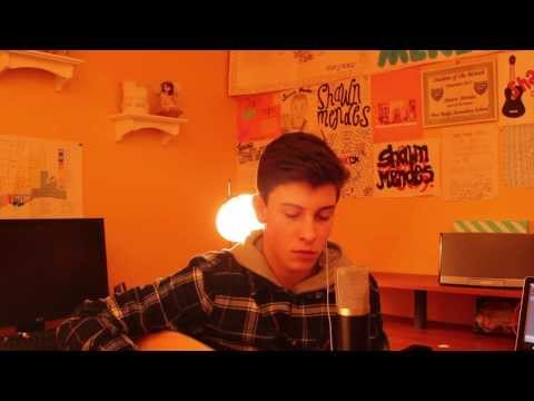 Say Something - Shawn Mendes (Cover)