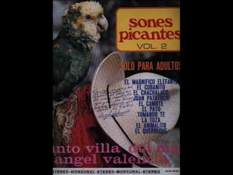 El Chachalaco - (Angel Valencia) Conjunto Villa del Mar de Angel Valencia.