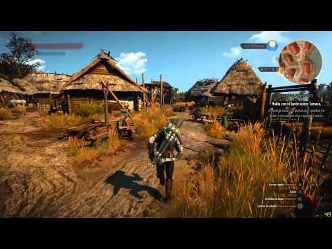 The Witcher 3 : Wild Hunt | GTX 970 + AMD FX 8320