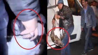 حصري..لحظة إطلاق الرصاص على الكلب الذي هاجم شرطي بالبيضاء..(فيديو صادم) | بــووز