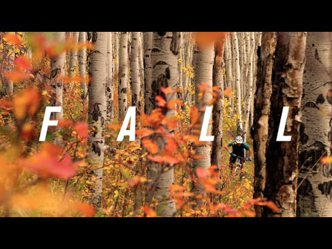 Fall: Peak Season