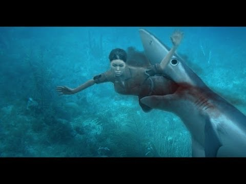 SHARK ATTACK - Great white shark attacks, a rare shark attack video