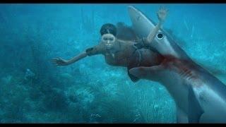 SHARK ATTACK Great White Shark Attacks, A Rare Shark