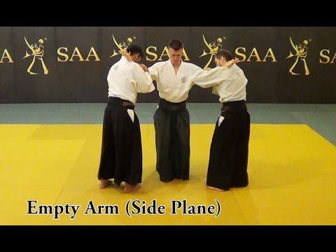Tegatana of Aikido   Application Principles