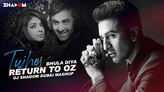Tujhe Bhula Diya x Return to Oz Mashup DJ Shadow Dubai Video HD Download New Video HD