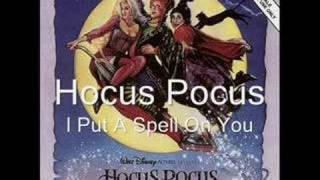 Hocus Pocus I Put A Spell On You