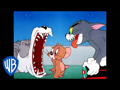 Tom a Jerry - nejlepší honičky