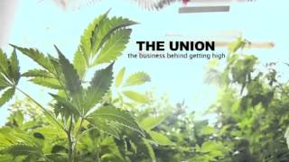 The Business Behind Getting High!