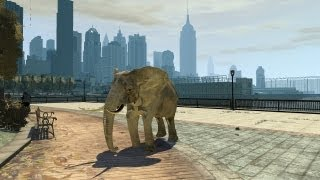 Video Grand Theft Auto IV Elephant (MOD) HD