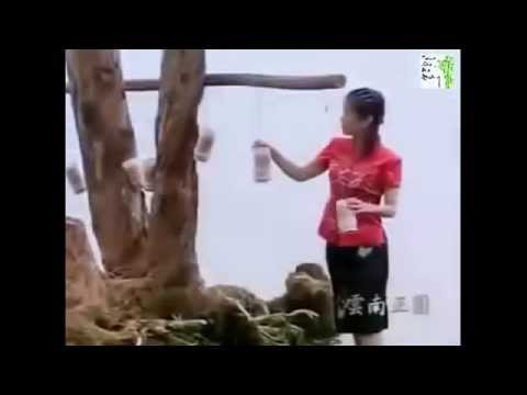 TIENG SAO TRUNG HOA HAY NHAT 3  - BEST CHINESE FLUTE 3