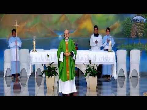 Santa Missa | 29° domingo do tempo comum | 22.10.2017 | Padre José Sometti | ANSPAZ