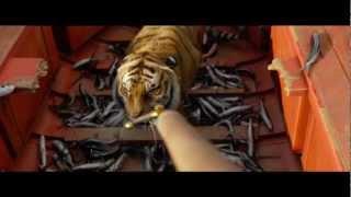 Video Clip: Flying Fish