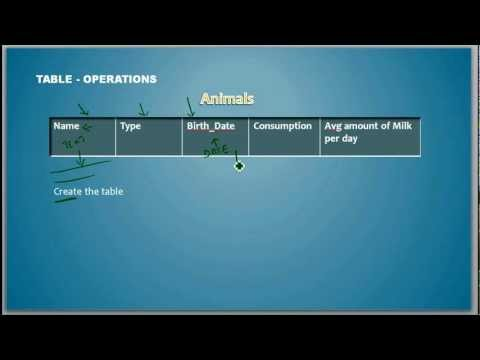What is a Data Definition Language - Database Tutorial 4