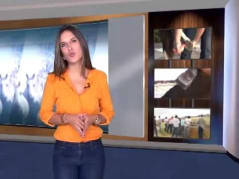 MMTV  328 - 10/01/2016   2016 começou a todo vapor com a posse da nova diretoria da ABCCMM. A solenidade de posse reuniu criadores-associados de todo o Brasil. Além da nova diretoria executiva da ABCCMM, tomaram posse os representantes nos conselhos Superior, Técnico e Fiscal. O criador Daniel Borja, que presidiu a chapa Avante Marchador, assume a direção da ABCCMM pelos próximos três anos. O novo presidente falou sobre os novos desafios.  VT POSSE NOVA DIRETORIA   Um número surpreendente: um milhão de pessoas por ano formadas pelos cursos do Serviço Nacional de Aprendizagem Rural- SENAR. Toda essa gente lida com as atividades produtivas do campo. O jornalista Álvaro Pereira conversou com o Secretário Executivo do Senar, Daniel Carrara. Na entrevista, ele ressaltou a importância das parcerias para fomentar o mundo do cavalo e ainda os investimentos no jovem aprendiz. VT ENTREVISTA SENAR- DANIEL CARRARA    E a gente vai rever agora a experiência de um criador que nasceu em Minas Gerais, mas vive no Pará desde criança. Ao se aposentar, realizou um antigo sonho: conviver com o Mangalarga Marchador. No Haras Aluar, seu Ubaldo e família curtem também uma natureza exuberante. Cercado pelo verde, eles aprenderam a lidar com a raça e amá-la. Veja na reportagem de Felipe Malaco. VT HARAS ALUAR Em 2015 nós mostramos várias experiências de equoterapia onde o contato com o mangalarga marchador fez toda a diferença. Os resultados agradam especialistas e pais, que buscam maior qualidade de vida para os pacientes. Vamos rever o trabalho realizado no Instituto Paraíso, o INPAR, localizado em Itatiaiuçu, Minas Gerais. Lá, as qualidades do marchador fazem toda diferença na recuperação de crianças com problemas neurológicos e pessoas com depressão.  VT BENEFÍCIOS DA EQUOTERAPIA- DEPRESSÃO E PROBLEMAS NEUROLÓGICOS    Etapa Ceará do projeto Caminhos do Marchador, o enduro da raça!  As provas de maneabilidade e a cavalgada planilhada foram marcadas por muita emoção e disputas em alto nív