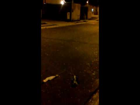 Vídeo Chuva de granizo e tempestade de raios castigam São Carlos