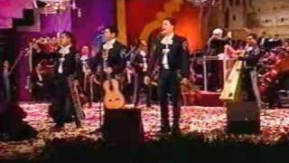 Pajarillo (audio) Mariachi Vargas