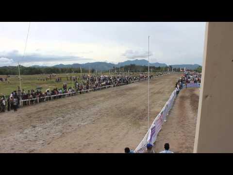 Kuda Triple Eleven. Pacuan Kuda Bank Nagari Sawahlunto Derby'13