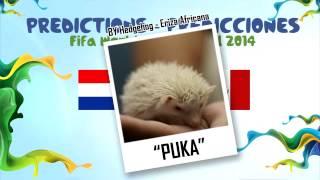 "Octavos De Final ""PUKA"" (Erizon Cavani) La Eriza Predice"