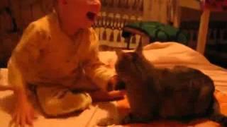 Kucing menyerang bayi