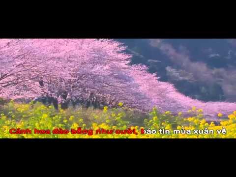 Karaoke Lắng Nghe Mùa Xuân Về - Bằng Kiều