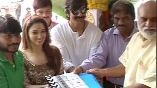 Bengal Tiger Movie Opening Video-Raviteja,Tamanna-iQlik