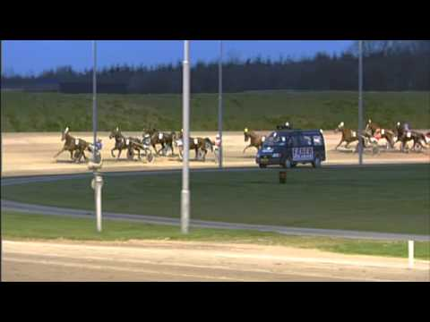 Vidéo de la course PMU PRIX JOKER DE ROZOY