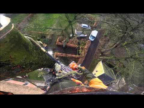 cutting down a 72 feet big tree, gopro hero black
