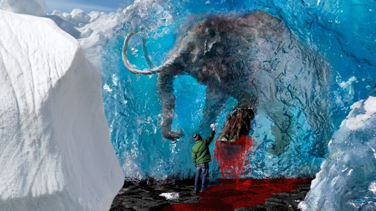 Mammoth Found With  U0026quot Flowing Blood U0026quot  - Sourcefed
