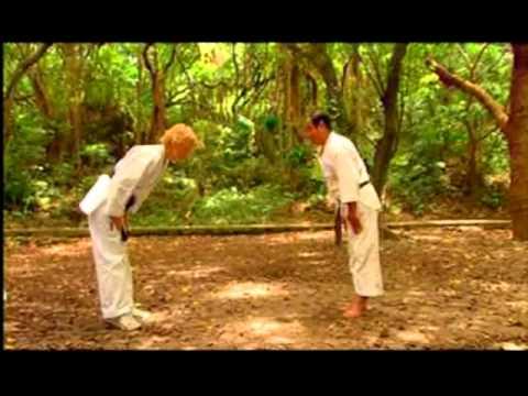 Смертельные искусства. Карате / Deadly arts. Karate