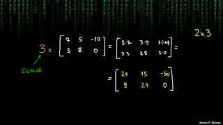 Matrike – množenje s skalarjem