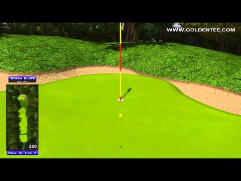 Golden Tee Great Shot on Shady Acres!
