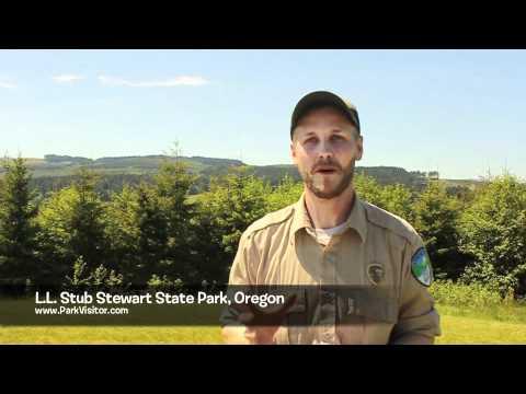 Ll stub stewart state park oregon youtube for Stub stewart cabins