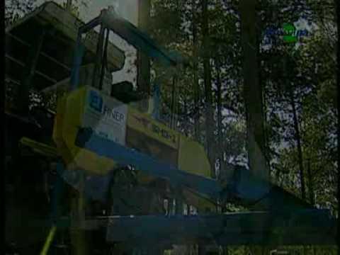 Serrarias móveis : alternativa para agregar valor à madeira : parte 1 - Dia de Campo na TV