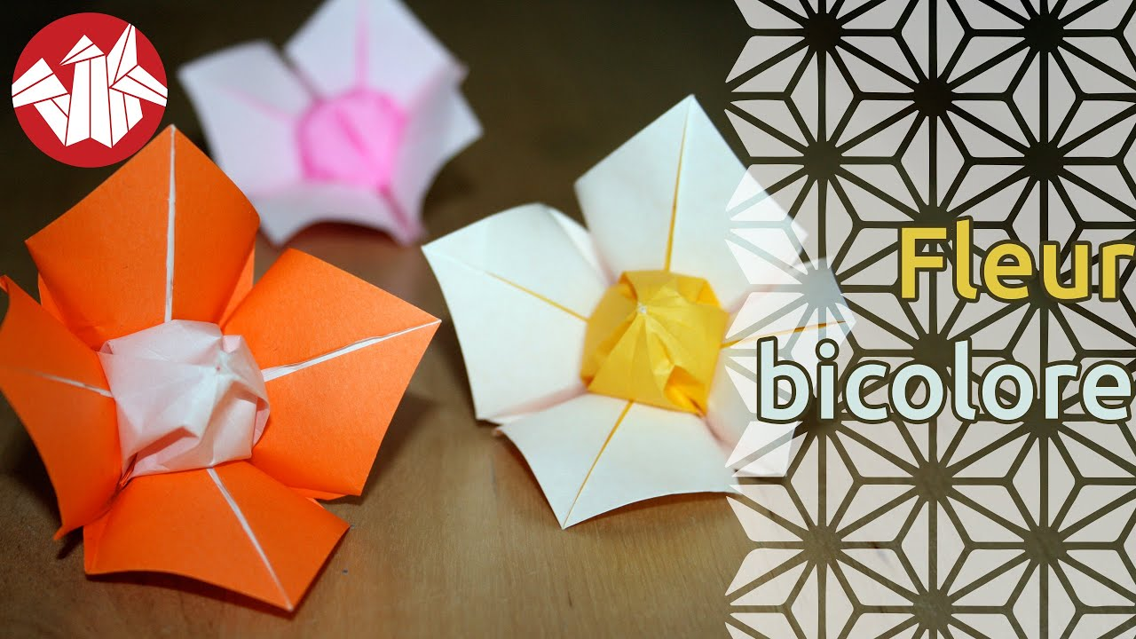 Origami fleur bicolore youtube - Youtube origami fleur ...