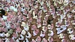 ترتيب ظهور الانبياء للشيخ صالح المغامسي