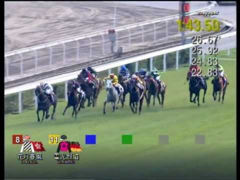 Vidéo de la course PMU HONG KONG CUP