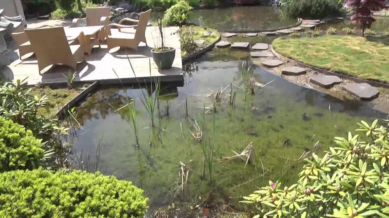Le jardin et bassin de jardin japonais de van keulen van keulen garden youtube for Bassin de jardin algues vertes