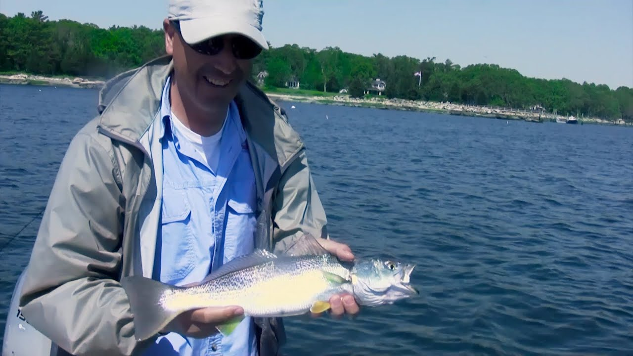 Saltwater fishing tips for bluefish and weakfish jigging for Saltwater fishing basics