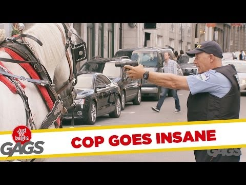 Dumb Cop Fines A Horse!